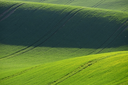 Moravian Tuscany – beautiful spring landscape in south Moravia near Kyjov town. Czech Republic - Europe.
