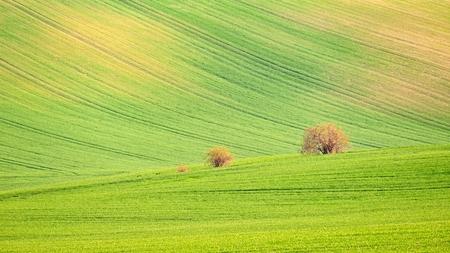 Sunset landscape photo of Moravian Tuscany in Czech Republic