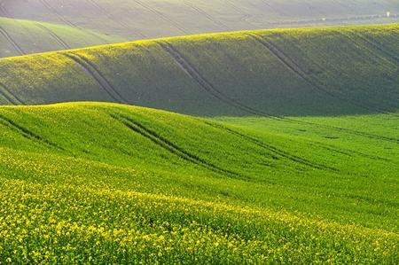 Frühlingssonnenuntergang-Landschaftsfoto der mährischen Toskana in der Tschechischen Republik
