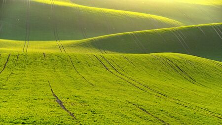Green spring nature background with setting sun and grass. Waves on the field.  Moravian Tuscany - Czech Republic - Europe.