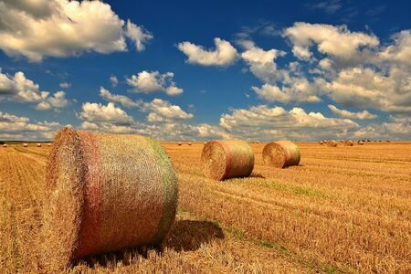 Beautiful countryside landscape. Hay bales in harvested fields. Stockfoto - 150296142