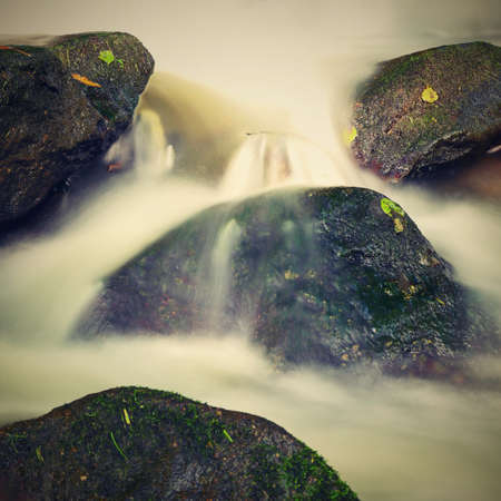 Beautiful landscape with nature and river with stones in the forest.