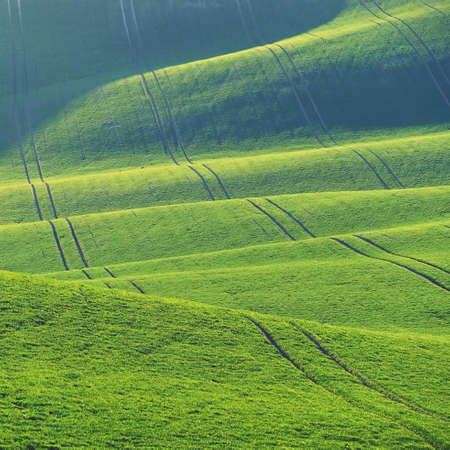 Beautiful spring landscape with green field. Waves and hills with grass in Moravian Tuscany - Kyjov. Stok Fotoğraf
