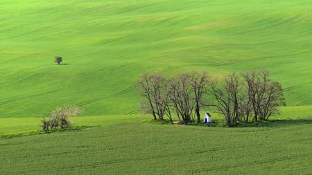 美丽的春天景色。圣巴巴拉教堂在与波浪 - 摩拉维亚托斯卡纳捷克共和国的领域的。