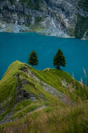 two fir trees hight above the turquoise Lake Oeschinensee near Kandersteg Stock Photo