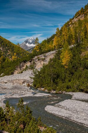 wild, untamed river and larches in Val Cluozza with Piz Linard in Swiss National Park