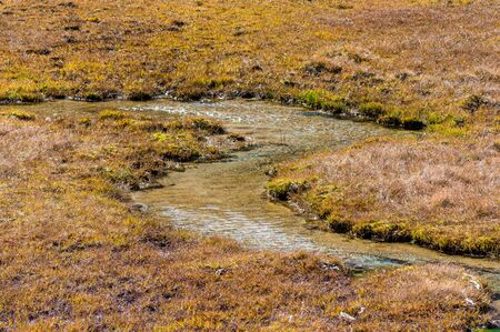 creek bend in a alpine moor at Val Fex