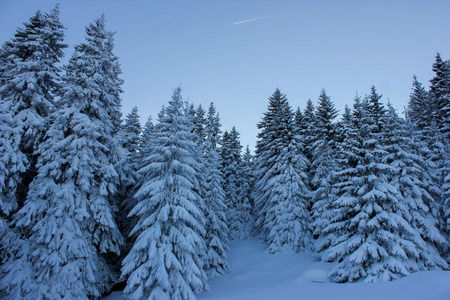 Vitosha Mountain in the winter,near Sofia, Bulgaria photo
