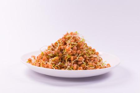 lenteja: alimentos saludables, brotes de lentejas rojo sobre blanco