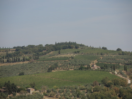 Toscaanse heuvels Stockfoto - 77685366