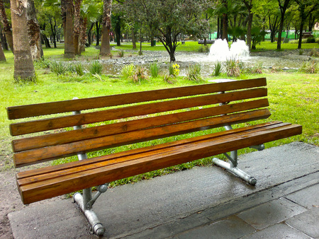 forniture: bench in a park