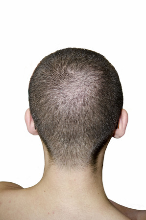 back of head: Back head of a young man with a short haircut Stock Photo