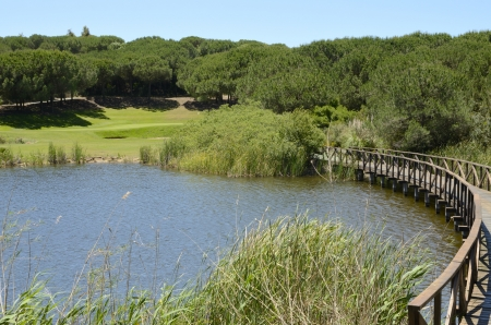 Wooden bridge in golf course in Andalusia photo
