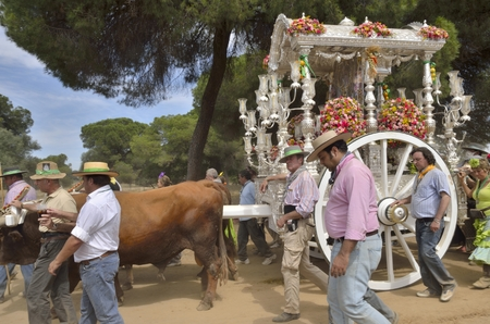 devout: Pilgrims in pilgrimage route of El Rocio in the countryside of Huelva that go to the Huelva village of El Rocio. The Pilgrimage of El Rocio is very famous religion event in Spain that meets lots of devout people for doing this pilgrimage.