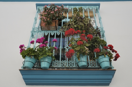 turqoise: Window with turqoise grille adorned with  flowers  in Estepona, a village located in the Mediterranean coast, Andalusia, Spain
