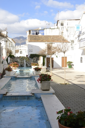 Flowers pots at the edge of pond in  Estepona, Malaga, Andalusia, Spain