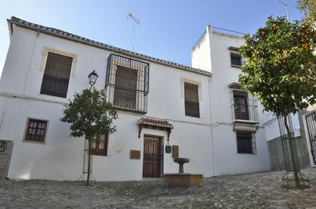 Fountain at cobblestone square in the medieval moorish district of Albaicin in Granada, Andalusia, Spain.