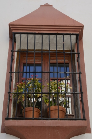 Flower pots at window with iron bars in Benahavis, a  mountain village next to Marbella, Andalusia, Spain.