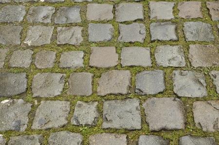 Wet cobbled road  in Leuven, Belgium. Stockfoto
