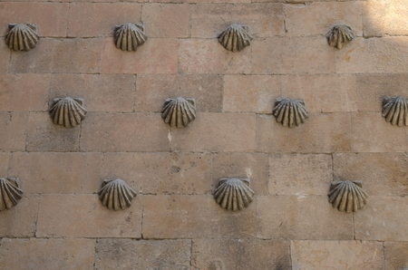 Detail  facade of the house of the shells in Salamanca, Spain. Banque d'images