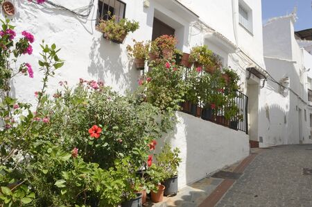 Flowers at whitewashed alley in Casares, a  mountain village of Malaga province, Andalusia, Spain. 版權商用圖片