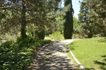 Footpath at park located in Madrid, the capital of Spain.