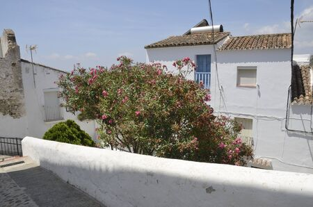 Whitewashed houses in Casares, a  mountain village of Malaga province, Andalusia, Spain. Stock fotó