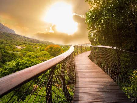 Kirstenbosch National Botanical Garden의 Canoe Walkway (목조 다리)는 금빛 하늘 배경, 케이프 타운, 남아 프리카 공화국과 함께 세계의 위대한 식물원으로 명성이