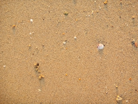 Sand sea and stomach