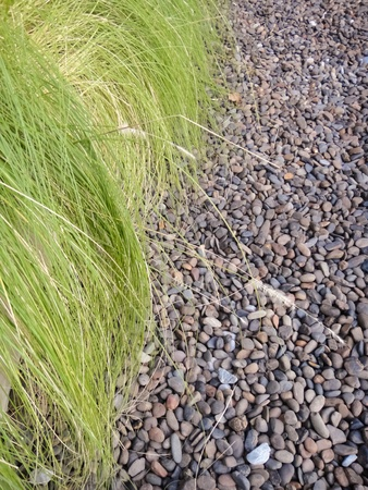 Grass and stone Stock Photo - 9513277