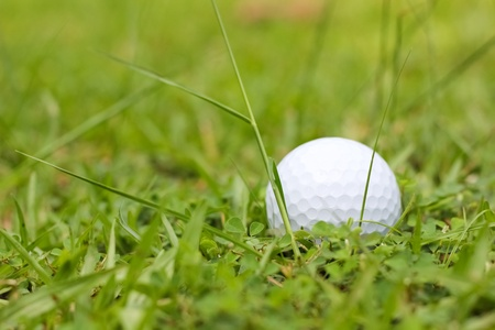 white Golf ball on green grass photo