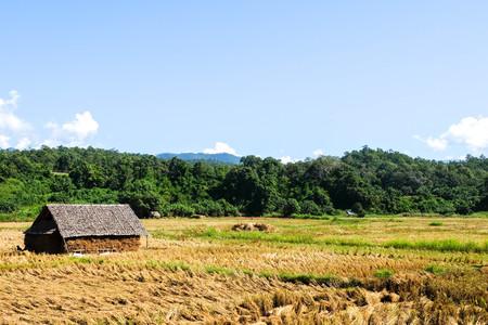 Meadow Su Tong Pe bridge is made of bamboo at Mae Hong Son, Thailand