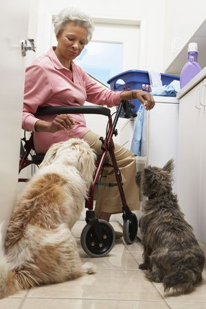 two persons only: Senior woman doing laundry with dogs