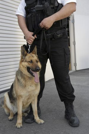Security guard with dog, low section Stock Photo - 3540874