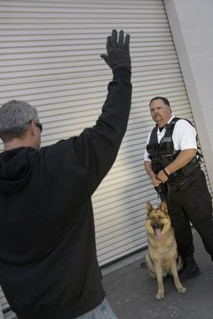 Thief with raised arms and security guard with dog Stock Photo - 3540884