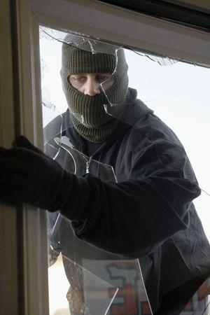 opening window: Ladr�n enmascarado de frenado a trav�s de la ventana LANG_EVOIMAGES