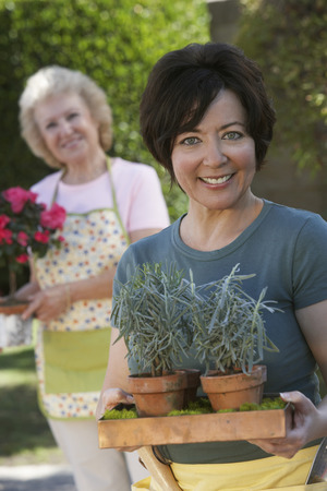 Two women gardening, focus woman in foreground Stock Photo - 3812181