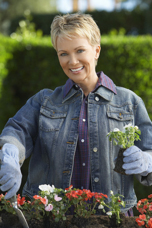 Senior woman planting flowers, portrait Stock Photo - 3812671