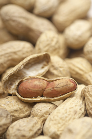 Peanuts, close-up Stock Photo - 3812907
