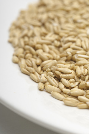 Brown rice on plate, close-up Stock Photo - 3812904