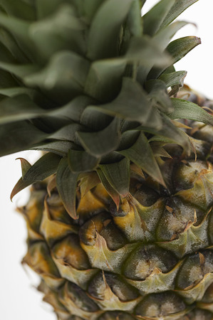 Pineapple, close-up Stock Photo - 3813065
