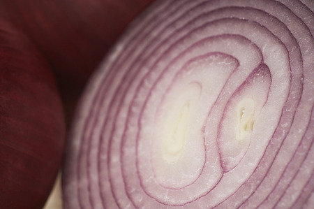 Cross section of red onion, close-up Stock Photo - 3813046