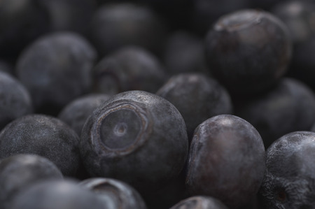 Blueberries, close-up Stock Photo - 3812954