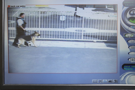 partnership security: Guard with dog seen on picture from security camera