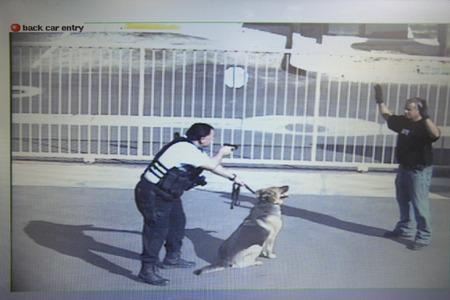 guardia de seguridad: Guardia de seguridad con arma de fuego destinadas a ladr�n en playa de estacionamiento