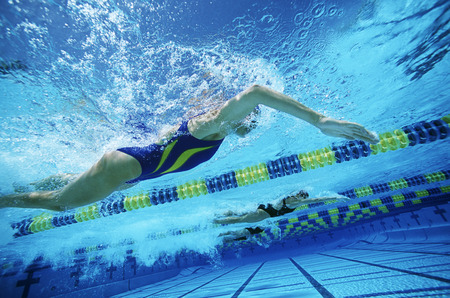 Underwater view of swimmers in pool Stock Photo - 3906432