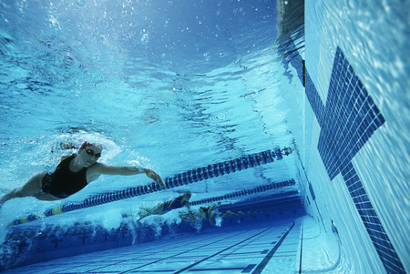 Underwater view of swimmers in pool Stock Photo - 3906422