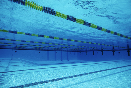 lane marker: Empty swimming pool with lane markers