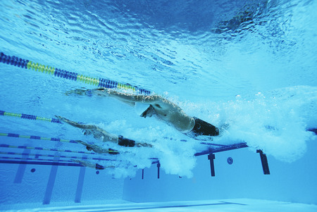 Male swimmers racing in pool, underwater view Stock Photo - 3906442