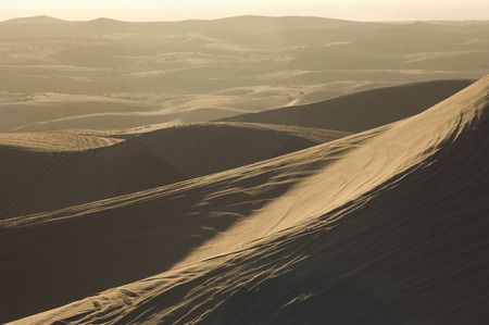 ATV Tracks on Sand Dunes Stock Photo - 4926127